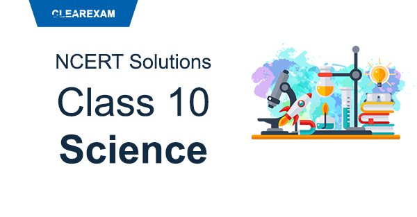 NCERT Solutions Class 10 Science