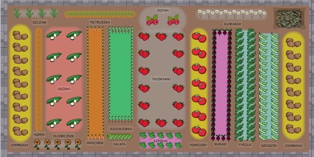 planowanie warzywnika