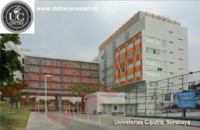 Daftar Program Studi / Jurusan UC Universitas Ciputra Surabaya