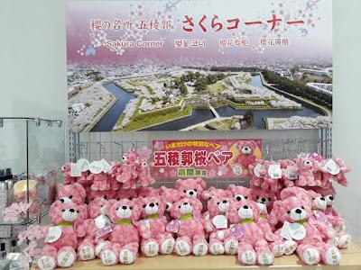 Goryokaku Park Sakura Cherry Blossoms