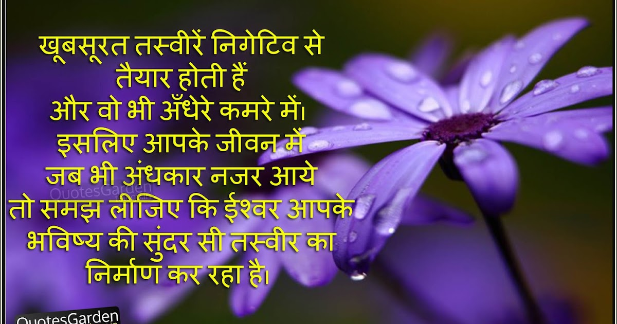 heart touching life quotes in hindi quotes garden telugu