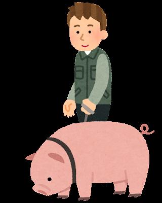 トリュフ豚のイラスト