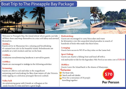 Pineapple Bay package