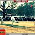 सुशीला दीदी स्मृति अंतरजिला क्रिकेट टूर्नामेंट: पहला सेमीफाइनल, पूर्णिया जीता