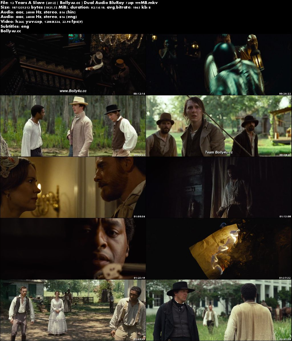 12 Years A Slave 2013 BluRay 400MB Hindi Dual Audio 480p Download