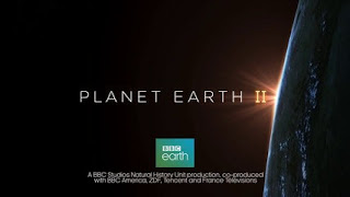 Planet Earth II | Watch HD Documentary Series