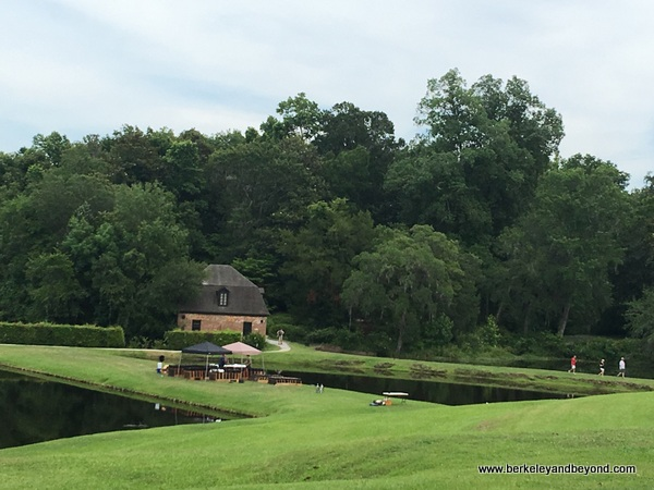 scenic expanse at Middleton Place plantation in Charleston, South Carolina