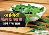 नीम के ये फायदे हैरत में डाल देंगे आपको- Neem leaves benefits in hindi - Neem Ke Fayde