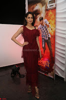 Pragya Jaiswal in Stunnign Deep neck Designer Maroon Dress at Nakshatram music launch ~ CelebesNext Celebrities Galleries 039.JPG