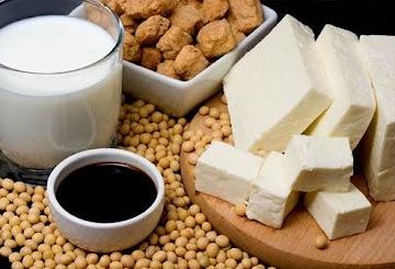 Makanan untuk Kesehatan Tulang dan Gigi