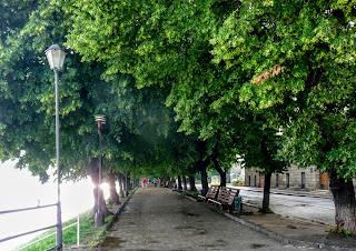 Ужгород. Липовая аллея на набережной Независимости