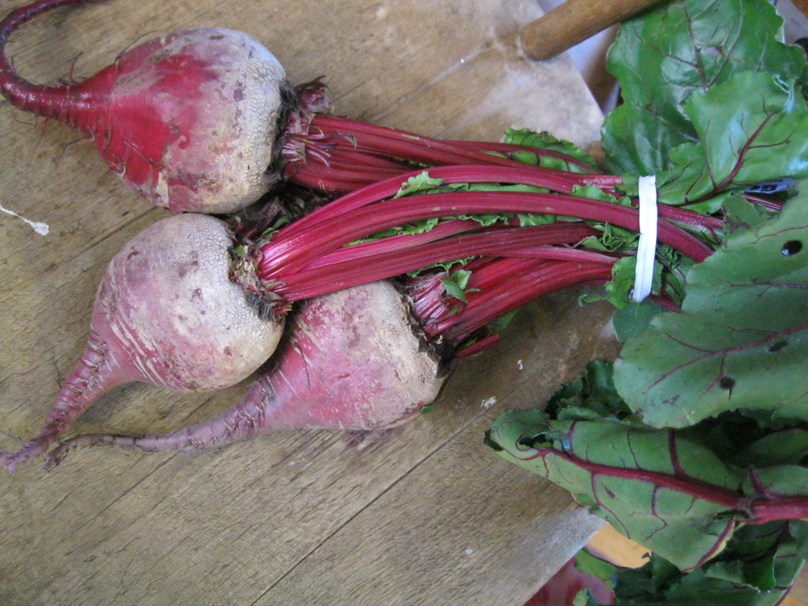 Beets for Food Coloring - For Him and My Family