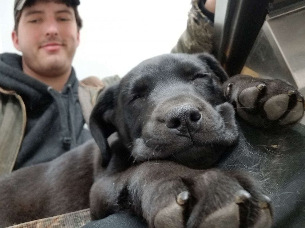A Deaf Guy Adopted A Deaf Rescue Puppy And Taught Him Sign Language