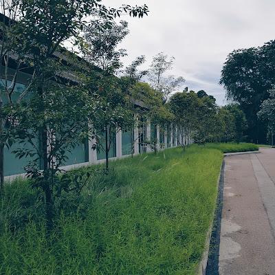 Landscape at Dover Street Market, Dempsey, Singapore