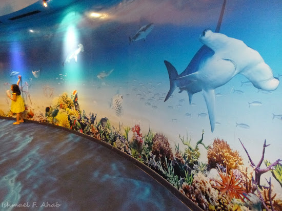 Wall designs in Siam Ocean World