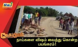 Koppiyam 02-11-2018 Unmaiyum Pinnaniyum | Raj Television
