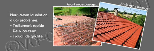 démoussage mur - couverture de toit