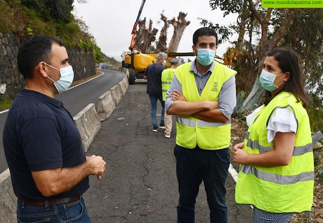 El Cabildo interviene de emergencia en el tramo de la carretera de Mazo afectado por la caída de un eucalipto