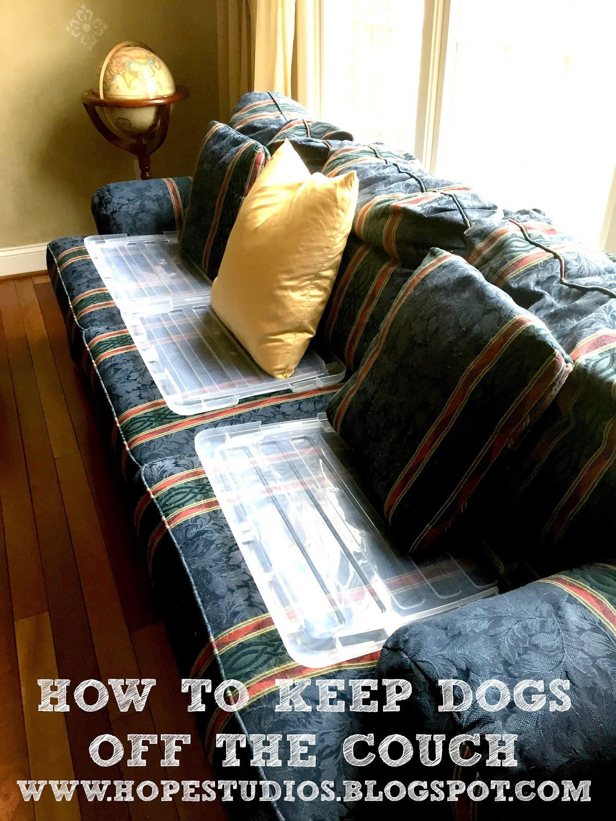 sam and cat sofa bed trick braxton culler sleeper hope studios how i keep my dog off the couch