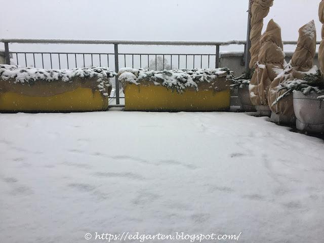 Aussicht Genussbalkon im Schnee