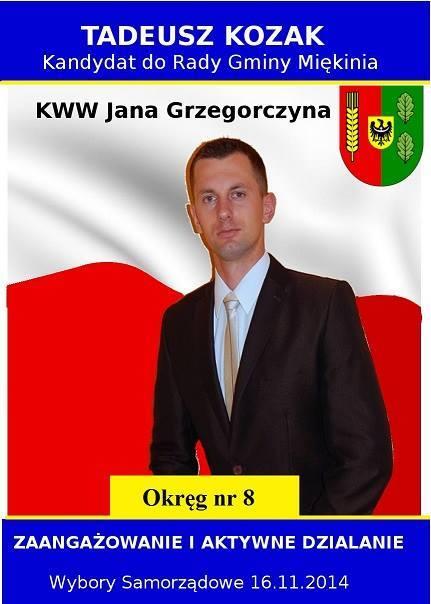 Kronika Wilkszyna Wybory Samorządowe 2014 Plakaty