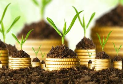 Investasi-Syariah-Gathering-Kampung-Kurma-Group