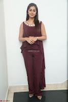 Nikki Galrani in a Brown Shining Sleeveless Gown at Nakshatram music launch ~  Exclusive 032.JPG