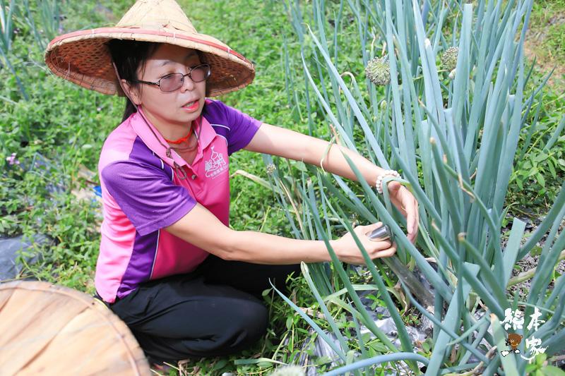 餵魚喝ㄋㄟㄋㄟ、碾米、拔蔥做蔥油餅|宜蘭親子農場DIY活動、童話村生態農場親子活動