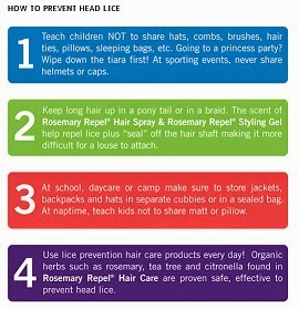 how to keep lice at bay infographic