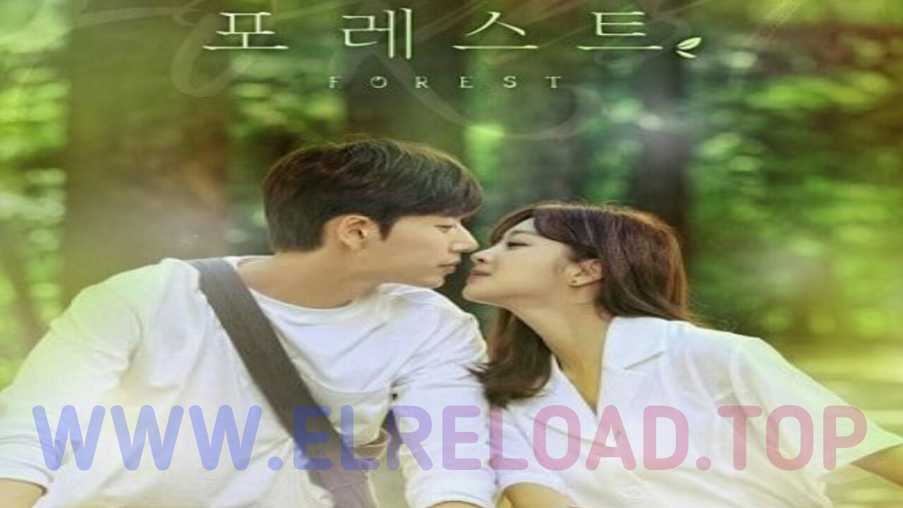 Download Drama Korea Forest Full Episode Subtitle Indonesia