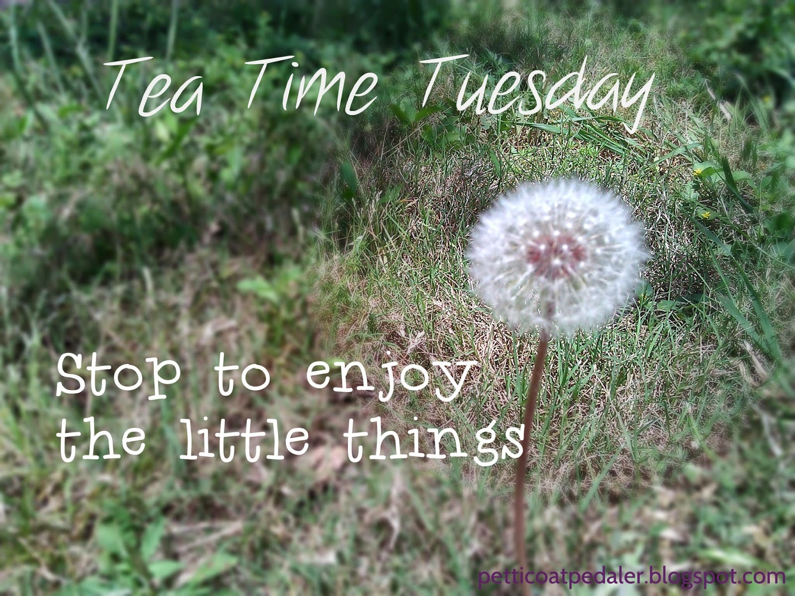 Tea Time Tuesday.  Stop and enjoy the little things.