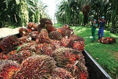 Lowongan PT Duta Swakarya Indah Pekanbaru November 2018