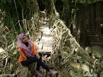 Minang Rancak – Jembatan Akar Pesisir Selatan, Salah Satu Karya Alam Yang Mengagumkan