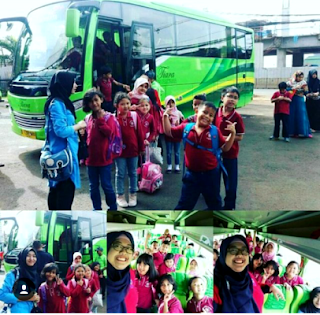 Harga Sewa Bus Medium 2019, Harga Sewa Bus Medium, Sewa Bus Medium 2019
