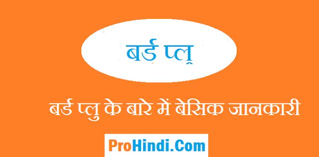 Bird Flu In Hindi