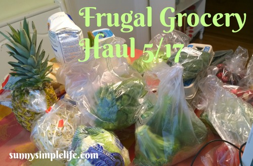 frugal living, feeding large family on budget