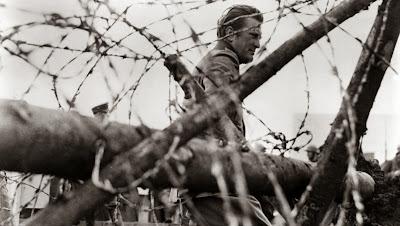 La soledad o el soldado, Francisco Acuyo, Ancile
