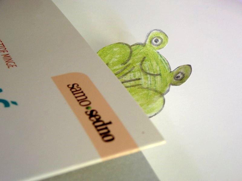 zakładka do książki żaba