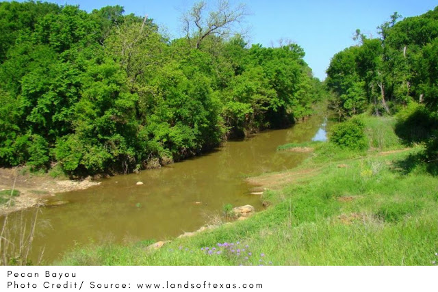 peaceful river with trees on either side
