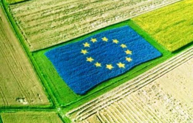 Politica agricola comune: preoccupazione delle Regioni per le proposte di Regolamento Ue