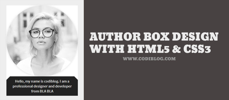 HTML5 and CSS3 Author Bio Data Info Box Design