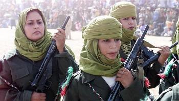 EFEMÉRIDES | Inicio de la lucha armada saharaui y otros aniversarios.