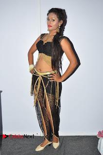 Actress Dancer Nisha Pictures at Janatha Garge Sucess Meet  0098.JPG
