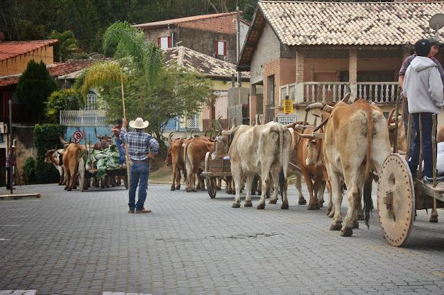 Trechos da Estrada Real: tropeiros de São Luiz do Paraitinga