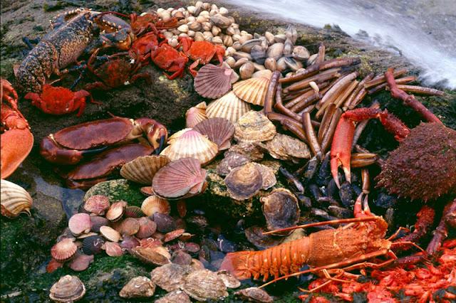 Hải sản Galician
