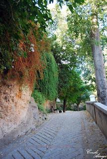Precioso y frondoso camino de subida al castillo desde el parque de los Borrunes