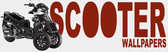 Scooter Logo on Yamaha Zuma 50 Rear Shock