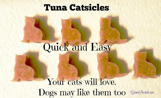 Cat shaped tuna catsicles on white paper