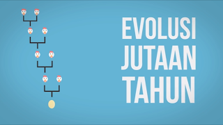 Evolusi Nenek Moyang Ayam Hingga Menjadi Ayam Saat Ini