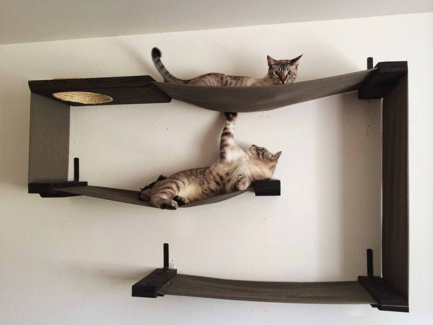Modern Cat Shelves Handmade Unique